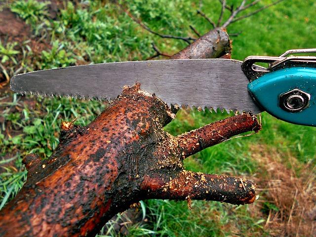 pila na řezání dřeva