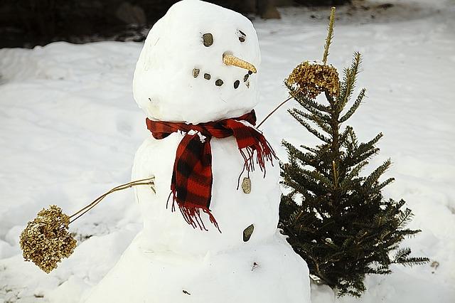 sněhulák se stromem