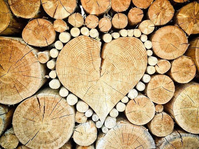 srdce z kmene